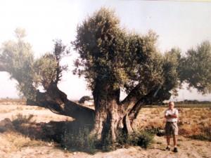 Olivera Matola 2
