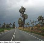 carretera Elche La Marina
