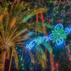 Explosion de luz y color en la Hoya. Inmaculada Román