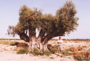 Olivera Matola 1